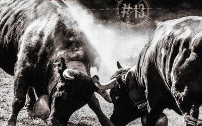 GOTTHARD desvela portada, tracklist y adelanto de su nuevo CD