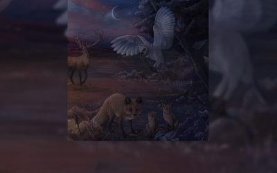 Review: «Deidades», un viaje a la naturaleza que no olvidarás gracias a BEAR, THE STORYTELLER