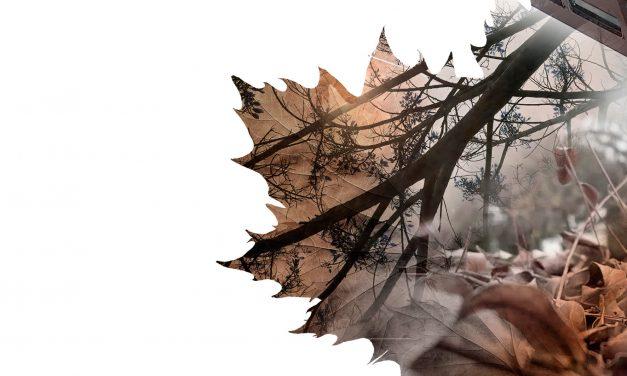 ARISE presenta nuevo videoclip para «[Des]Conexión»