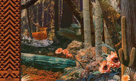 SPACE DEER edita su primer disco «The Forest»