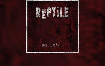 """Review: REPTILE tiene nuevo álbum llamado """"Ruido orgánico"""""""